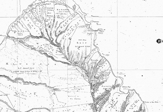 AAA - Hawaiian Government map, 1876